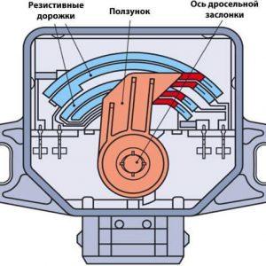 Датчик положения дроссельной заслонки ЗМЗ-406: неисправности